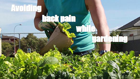 back pain while gardening